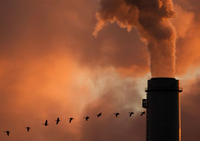 a flock of geese flying past a smokestack at the Jeffery Energy Center coal power plant near Emmitt, KS