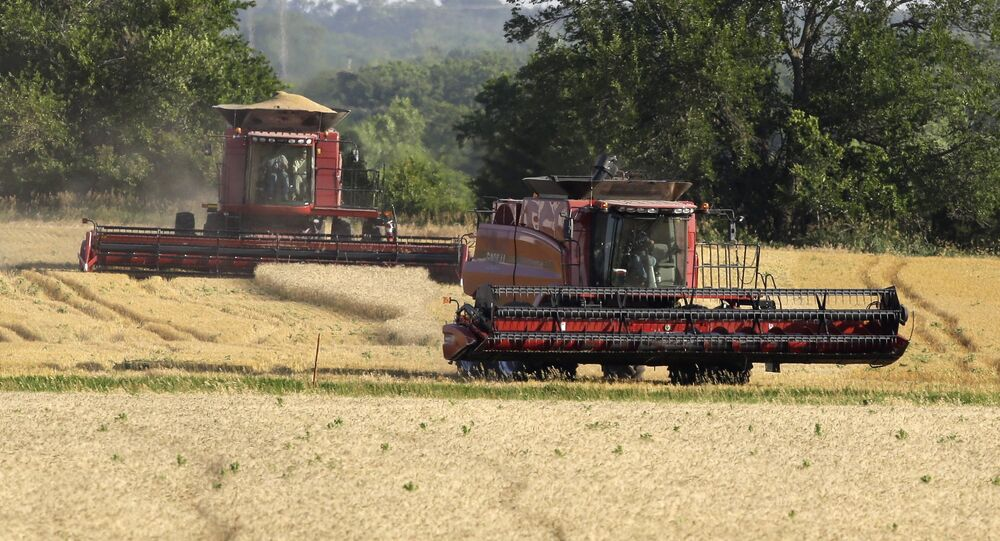 A combine moves to the next field while an other makes its last cut while harvesting wheat near Andover, Kan. (File)