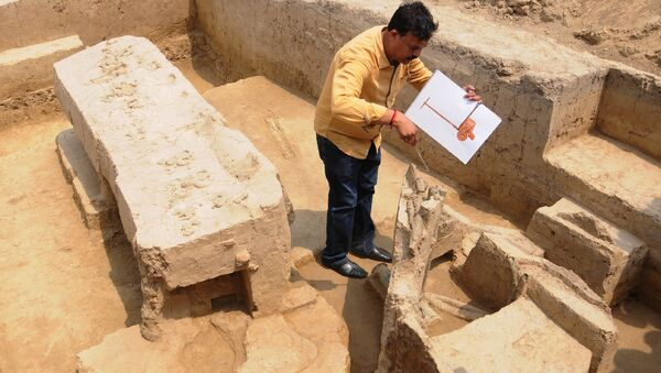 Sk Manjul, director of the Archeological Institute of India, looks at a the remains of a chariot belonging to Indus Valley civilisation after an archeological excavation at Sanauli site in Baghpat on June 4, 2018 - Sputnik International