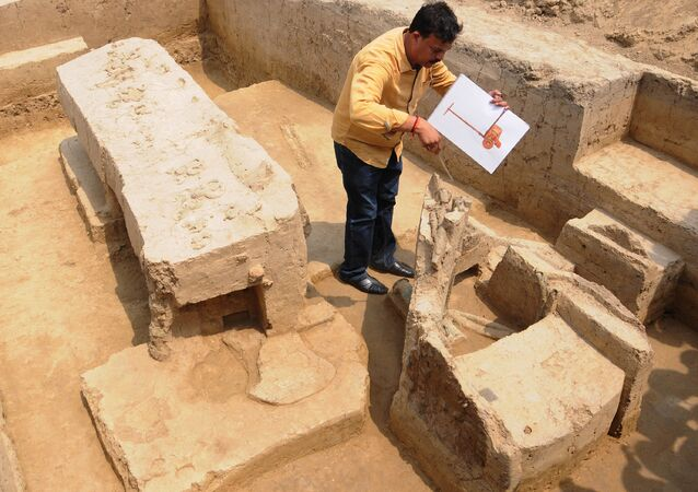 Sk Manjul, director of the Archeological Institute of India, looks at a the remains of a chariot belonging to Indus Valley civilisation after an archeological excavation at Sanauli site in Baghpat on June 4, 2018