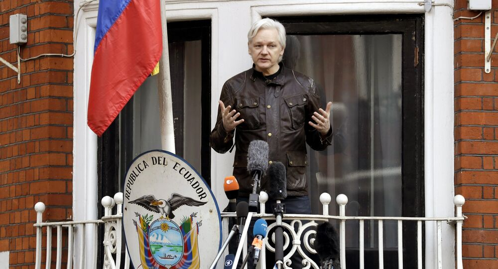 WikiLeaks Denies U0026 39 Insurance U0026 39 File Dump After Assange U0026 39 S