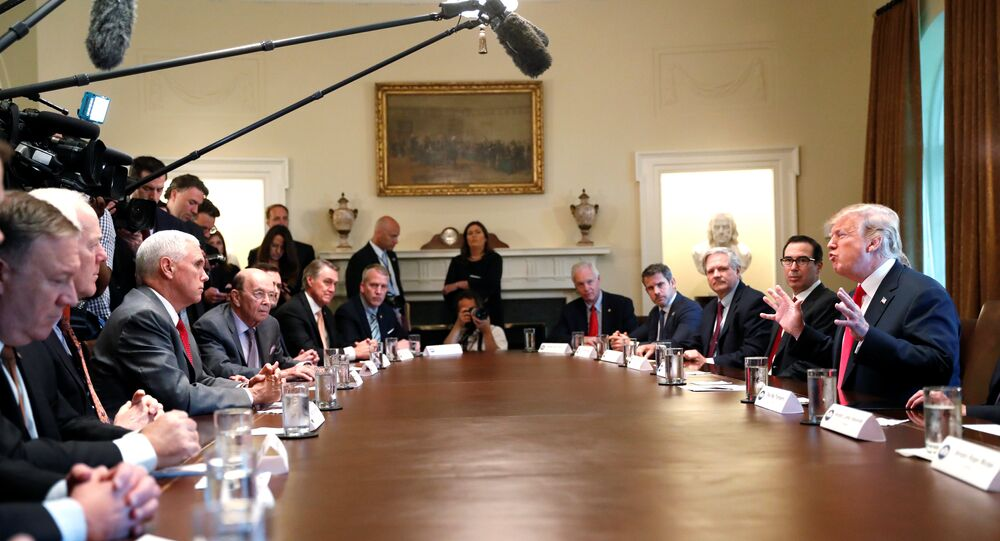 U.S. President Donald Trump participates in a Cabinet meeting, where he discussed immigration policy at the White House in Washington, U.S., June 20, 2018