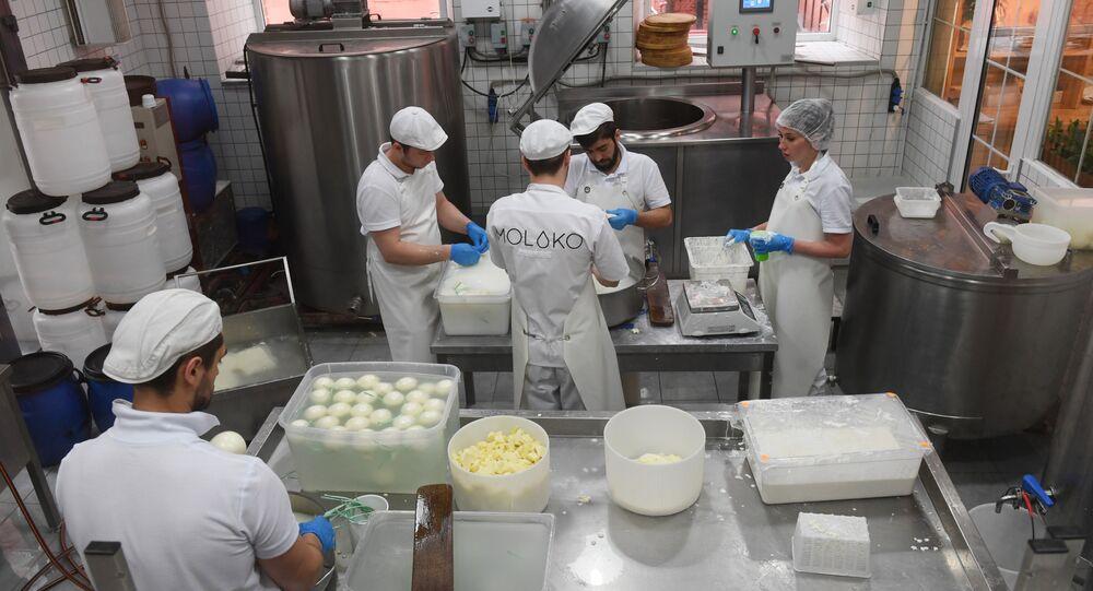 Syrovarnya's Cheese production