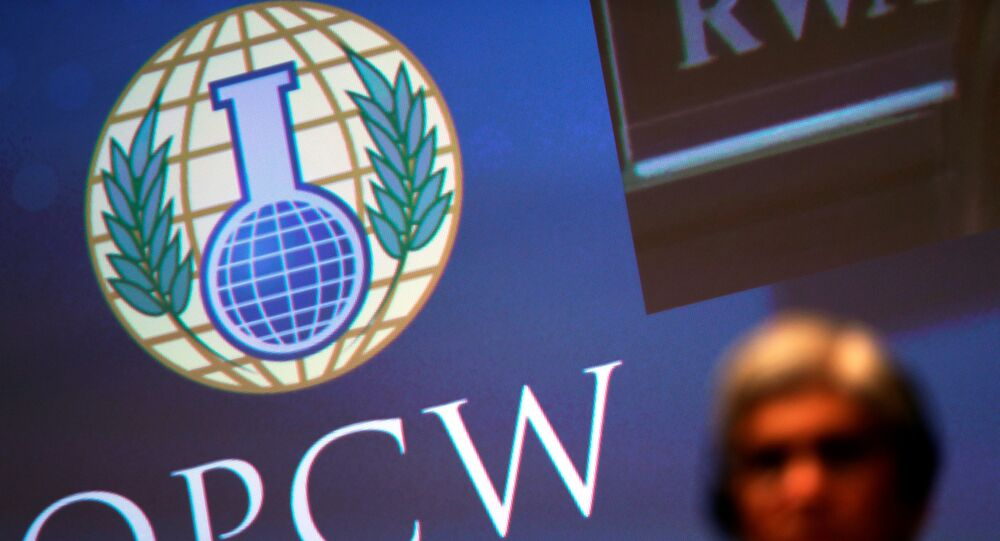 The logo of the Organisation for the Prohibition of Chemical Weapons (OPCW) is seen during a special session in the Hague, Netherlands June 26, 2018