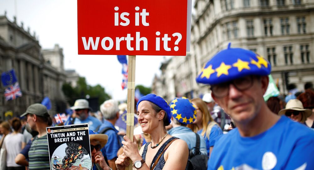 A woman holds a placard as she joins EU supporters, calling on the government to give Britons a vote on the final Brexit deal, participating in the 'People's Vote' march in central London, Britain June 23, 2018