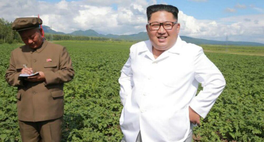 Kim Jong Un Visits Farm