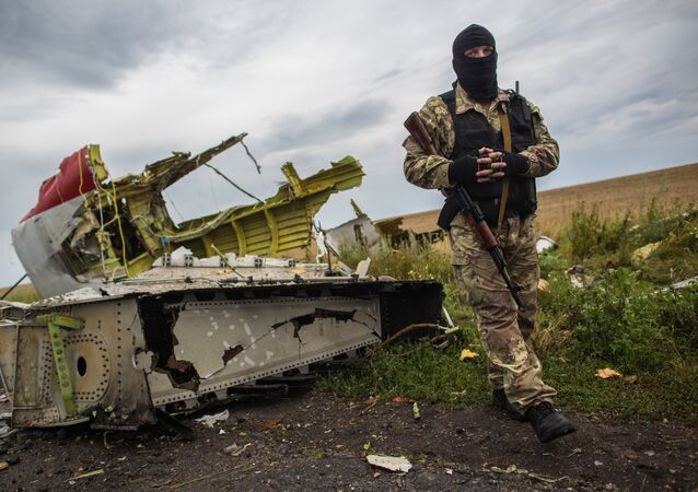 A militiaman at the crash site of the Malaysia Airlines Boeing 777 aircraft near Shakhtyorsk, Donetsk Region. File photo