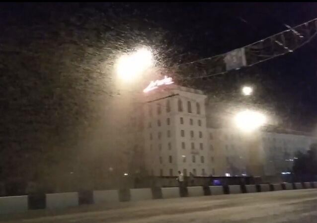 Swarms of Mayflies in Vitebsk. 2018