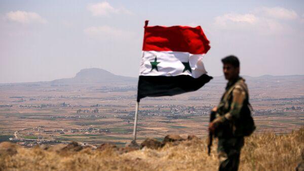 A soldier loyal to Syria's President Bashar al-Assad's forces is seen in Quneitra, Syria July 22, 2018 - Sputnik International