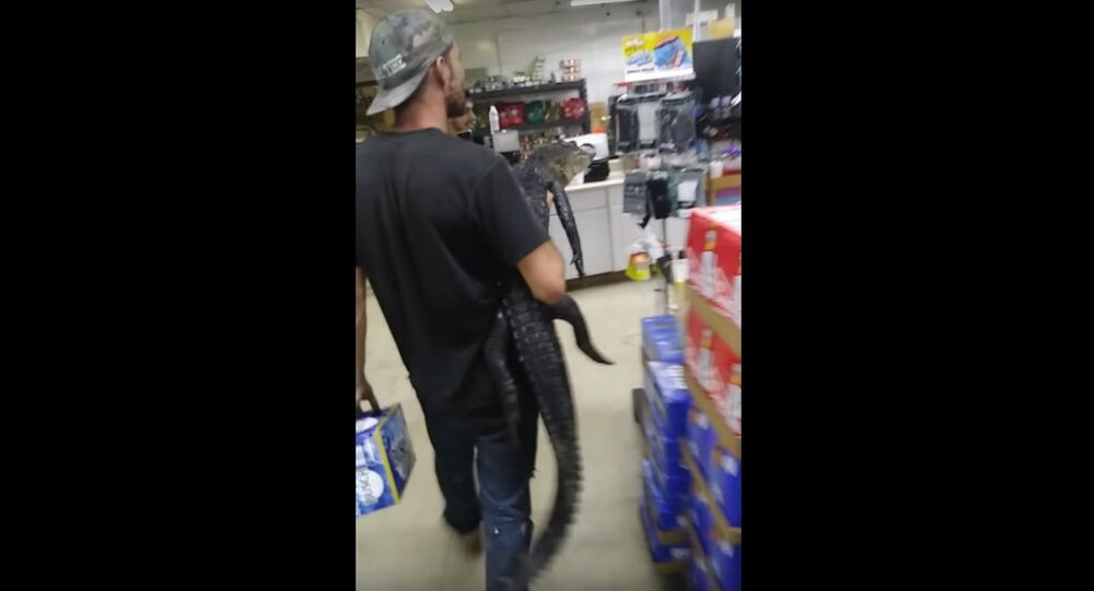 Florida man chases store shoppers with an alligator