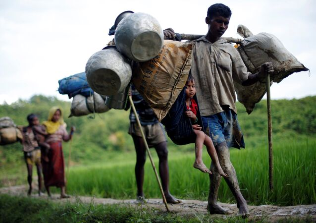 Rohingya refugees walk through a paddy field after crossing the Bangladesh-Myanmar border in Cox's Bazar, Bangladesh September 8, 2017.