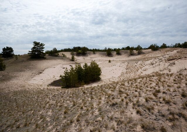 Dunes on Bolshoi Tyuters Island in the Gulf of Finland.