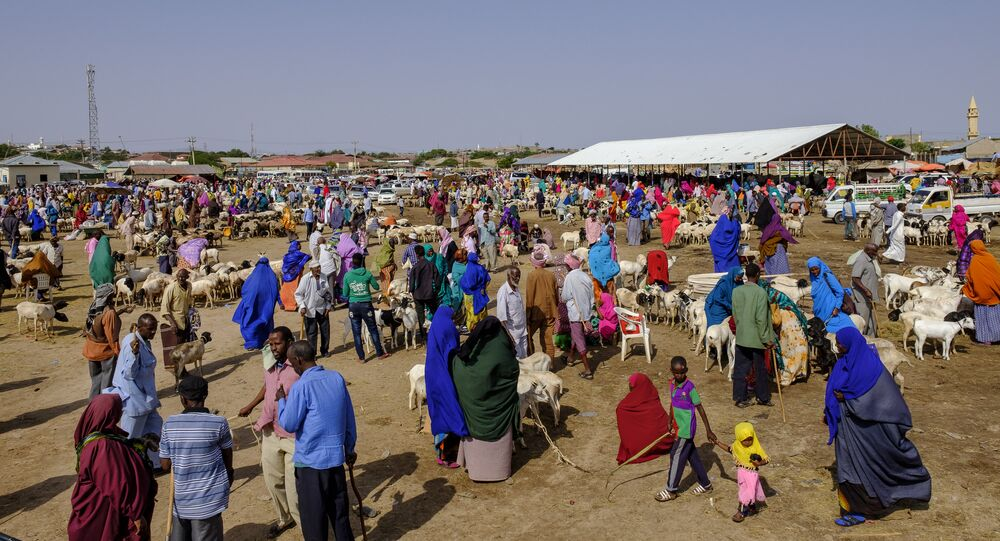 A general view of the livestock market in Hargeisa, Somaliland, on August 18, 2018