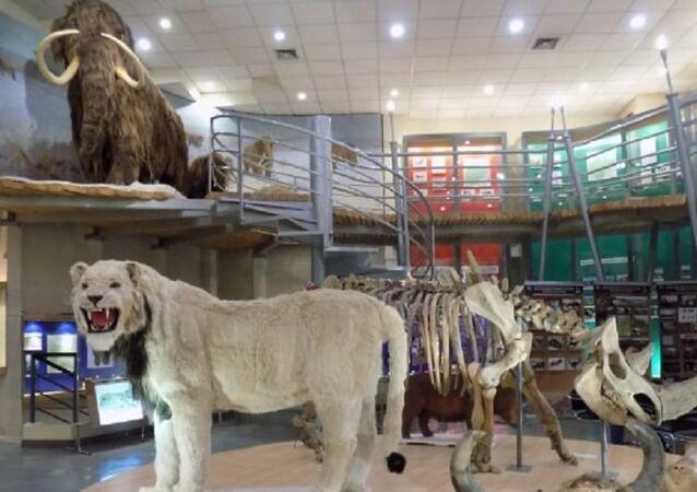 Jurassic-park style cloning facility
