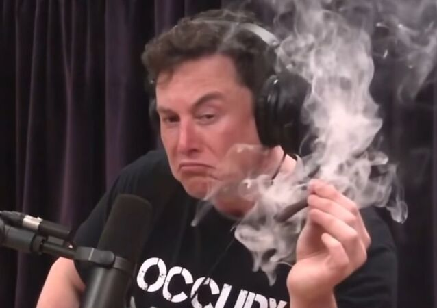 Elon Musk smokes a blunt with Joe Rogan