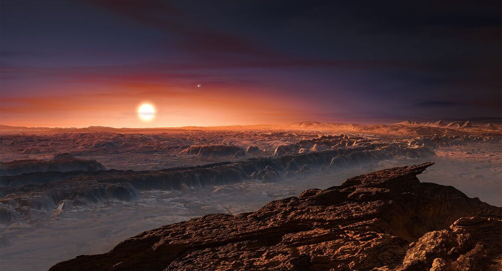 An artist's impression of the view from Proxima Centarui b