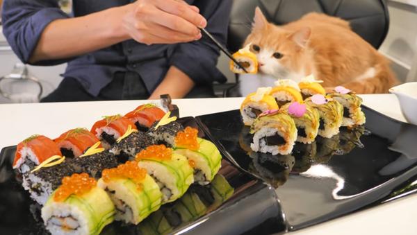 Art of Sushi - Sputnik International