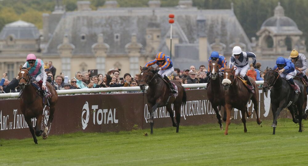 Italian Lanfranco Dettori riding British horse Enable leads the pack to win the Qatar Prix de l'Arc de Triomphe horse race at the Chantilly horse racetrack, 40 kms(25 miles) north of Paris, France, Sunday, Oct. 1, 2017