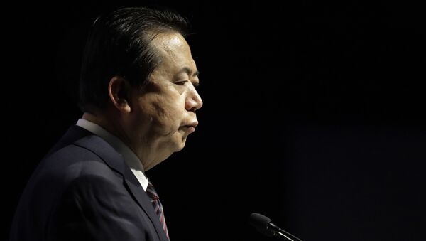 Meng Hongwei, delivers his opening address at the Interpol World congress on Tuesday, July 4, 2017, in Singapore - Sputnik International