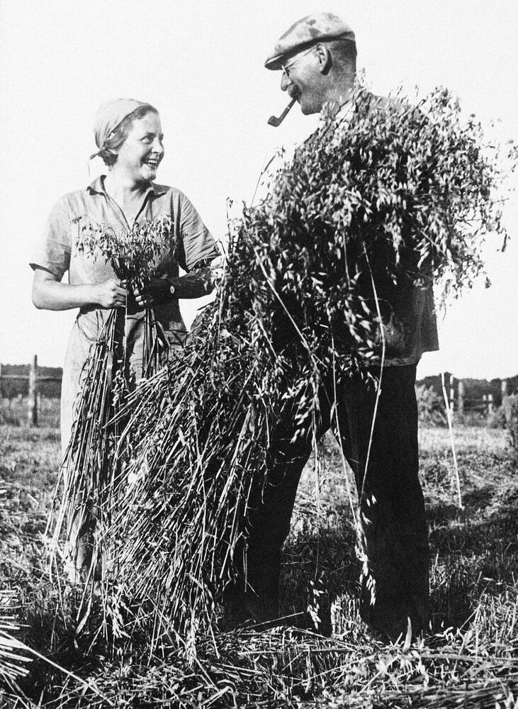 German Peasants in Fields Before WWII
