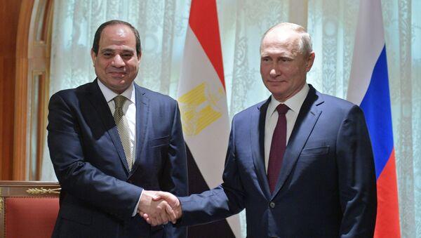 Russian President Vladimir Putin during a meeting with Egyptian President Abdel Fattah al-Sisi - Sputnik International