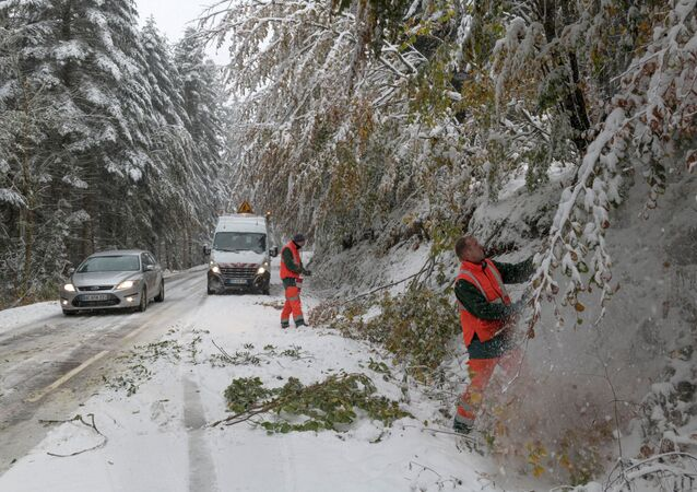 Workers cut trees to avoid branches falling on the road during snowfall in the commune on Ceyssat, in the Auvergne region, central France, on October 29, 2018