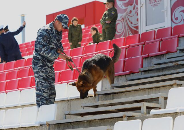 A canine expert and a service dog examine the stadium at the canine teams competition in memory of police captain Fedor Khikhlushka at Virazh motor racing venue in Belgorod Region. Winners of the competition will be part of public order police during the 2018 FIFA World Cup