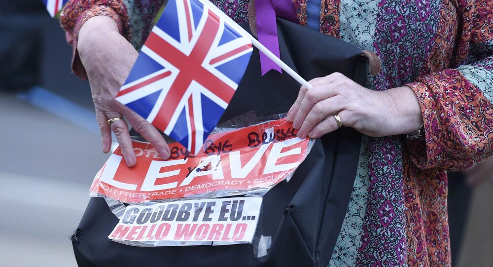 A vote leave supporter holds a poster in Westminster, London,
