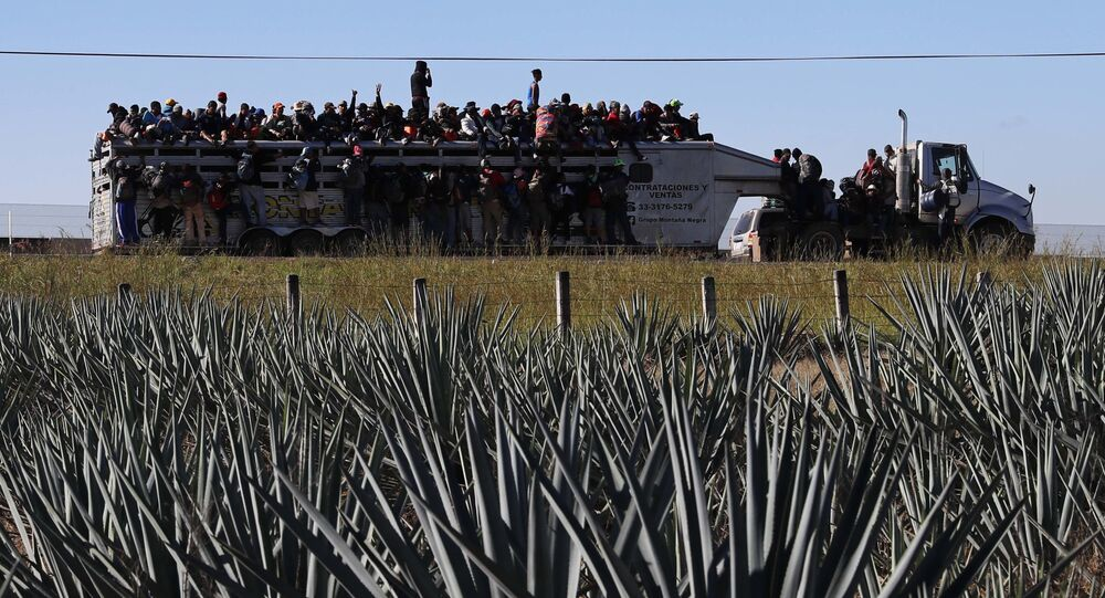 Central American migrants moving as a caravan to the U.S. border get a free ride on a truck past maguey farms as they depart Guadalajara, Mexico, Tuesday, Nov. 13, 2018