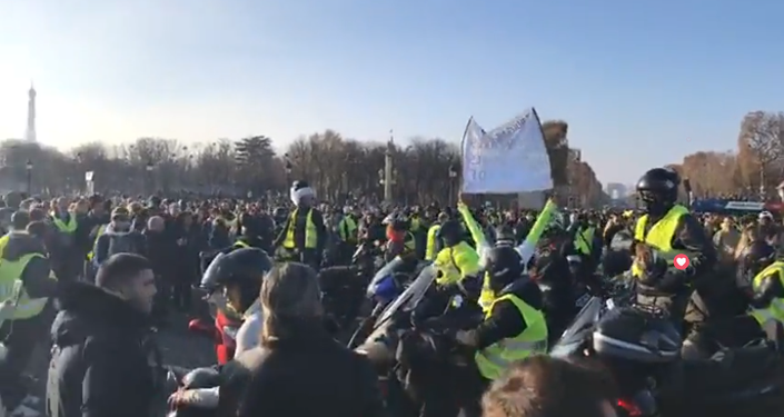'Yellow vest' protests against high fuel prices in Paris