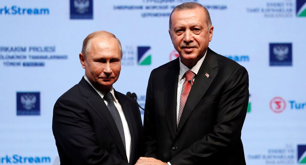 Turkish President Tayyip Erdogan and his Russian counterpart Vladimir Putin shake hands as they attend a ceremony to mark the completion of the sea part of the TurkStream gas pipeline, in Istanbul, Turkey November 19, 2018