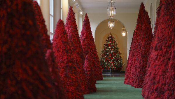 Topiary trees line the East colonnade during the 2018 Christmas Press Preview at the White House in Washington, Monday, Nov. 26, 2018. Christmas has arrived at the White House. - Sputnik International