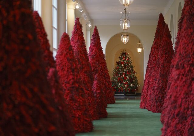 Topiary trees line the East colonnade during the 2018 Christmas Press Preview at the White House in Washington, Monday, Nov. 26, 2018. Christmas has arrived at the White House.