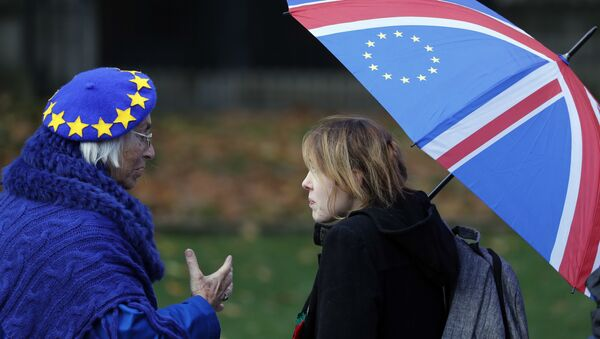 Anti-Brexit supporters talk as they protest opposite the House of Parliament in London, Tuesday, Nov. 27, 2018 - Sputnik International