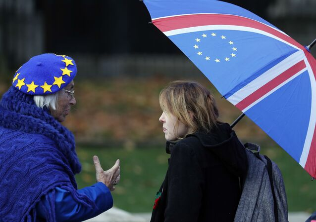 Anti-Brexit supporters talk as they protest opposite the House of Parliament in London, Tuesday, Nov. 27, 2018