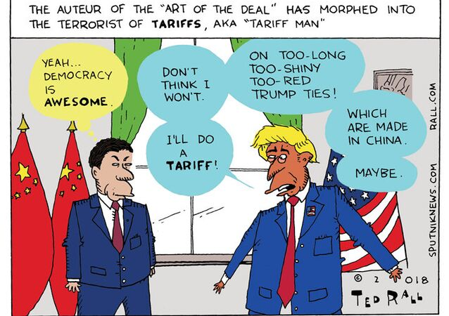 I'm an Asset Man Myself: Trump Proclaims Himself a 'Tariff Man'