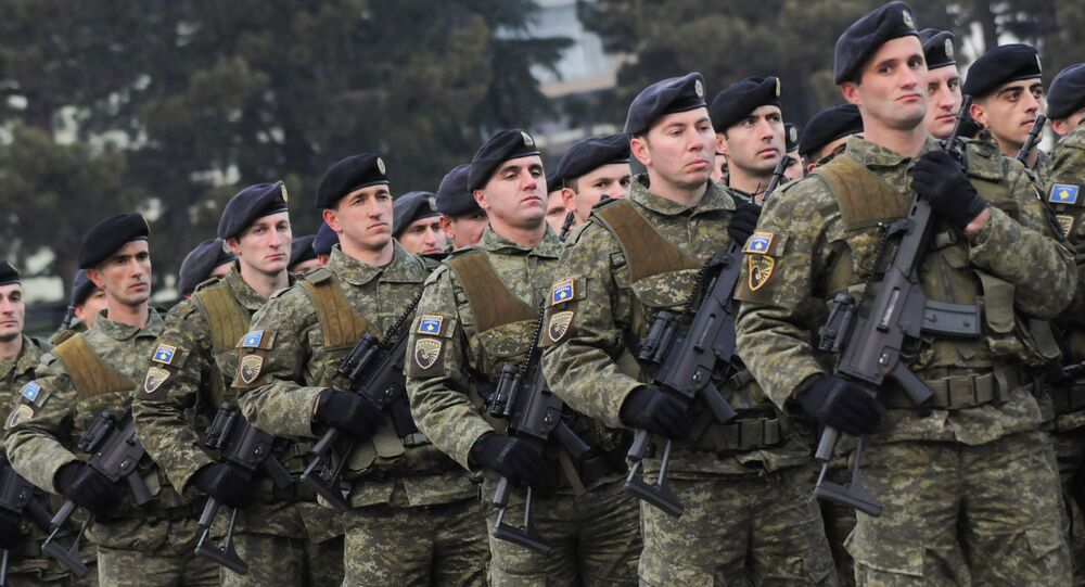 Members of Kosovo's security forces