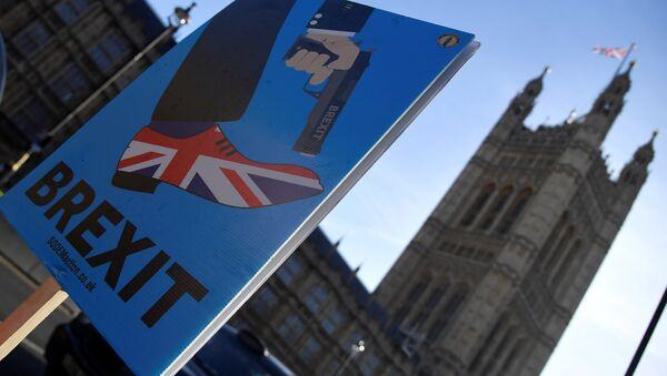 A demonstrator holds a placard during an anti-Brexit protest opposite the Houses of Parliament in London, Britain, December 17, 2018 - Sputnik International