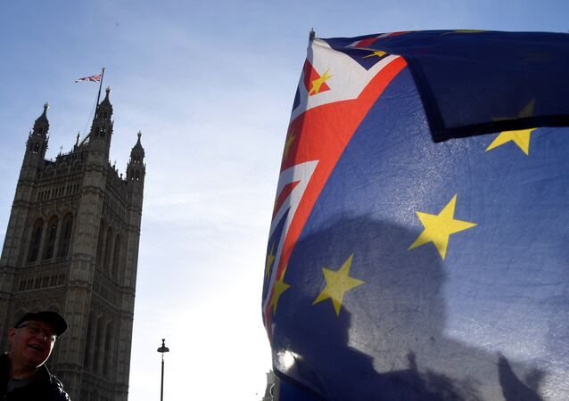 The European Union may be behind a plot to thwart a Brexit deal and spark chaos across the UK, according to Conservative Party Brexiteer MP Richard Drax