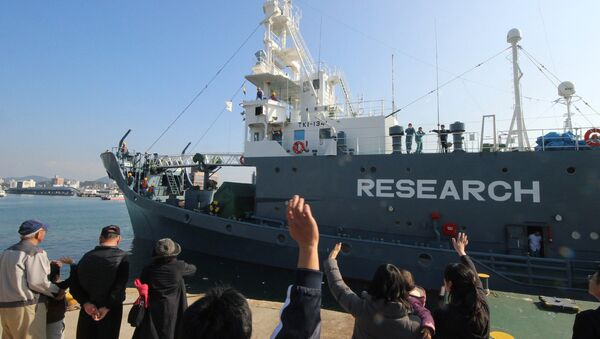 (FILES) In this file photo taken on December 1, 2015, a Japanese whaling ship leaves the port of Shimonoseki in Yamaguchi prefecture, western Japan to resume whale hunting in the Antarctic. - Sputnik International