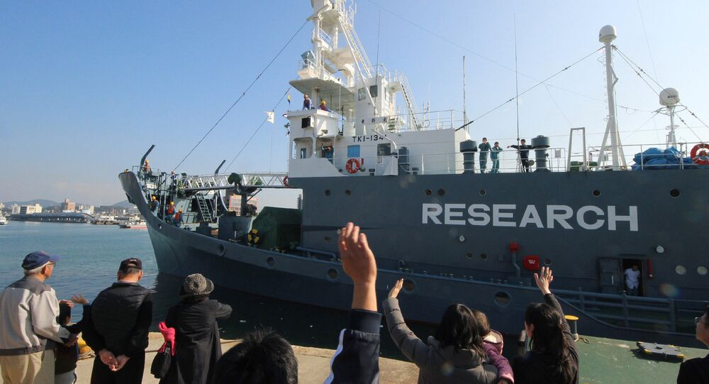 (FILES) In this file photo taken on December 1, 2015, a Japanese whaling ship leaves the port of Shimonoseki in Yamaguchi prefecture, western Japan to resume whale hunting in the Antarctic.