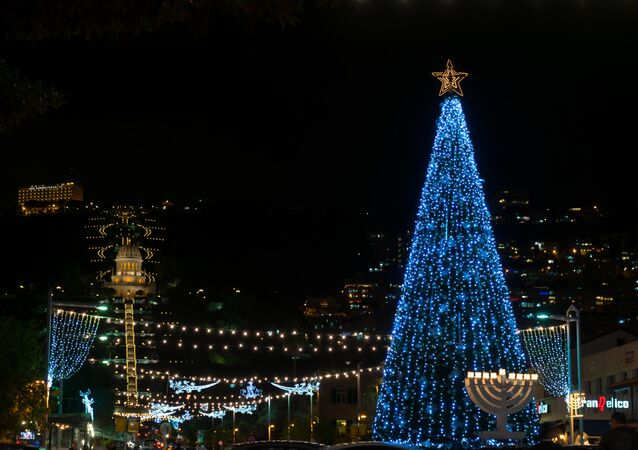 Spruce Tree, Haifa