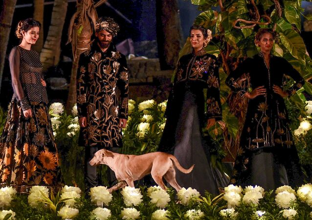 Indian models showcase a spring summer collection 'Gul-Dastah' by designer Rohit Bal at the Blenders Pride Fashion Tour in Mumbai on January 16, 2019