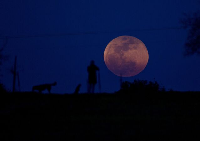 A person and a dog watch as the super blue blood moon rises over Michmoret, Israel, Wednesday, Jan. 31, 2018
