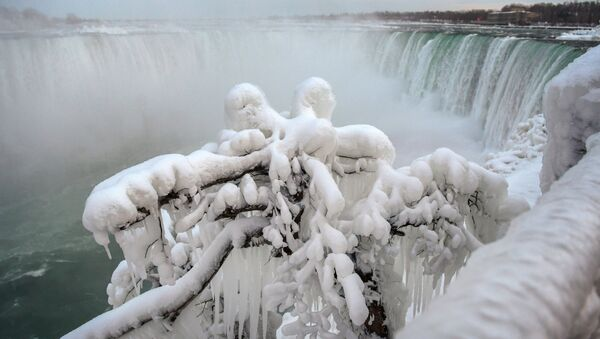 Ice and snow cover branches near the brink of the Horseshoe Falls, due to subzero temperatures in Niagara Falls, Ontario, Canada  January 22, 2019 - Sputnik International