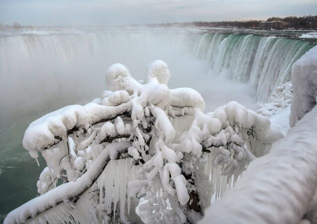 Ice and snow cover branches near the brink of the Horseshoe Falls, due to subzero temperatures in Niagara Falls, Ontario, Canada  January 22, 2019