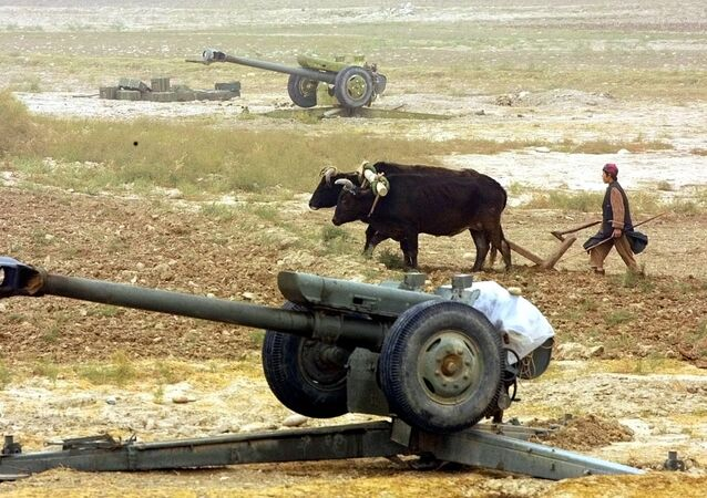 An Afghan peasant ploughs near Soviet-made D-30 howitzers just outside the village of Ai-Khanum, Northern Afghanistan, Friday Nov. 9, 2001.
