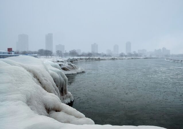 The city skyline is seen from the North Avenue Beach at Lake Michigan as bitter cold phenomenon called the polar vortex has descended on much of the central and eastern United States