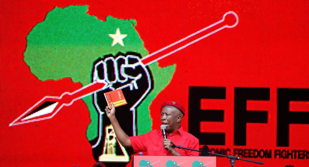 President of South Africa's radical left-wing party, the Economic Freedom Fighters (EFF), Julius Malema, holds a copy of the party's election manifesto in Soshanguve, near Pretoria, South Africa February 2, 2019