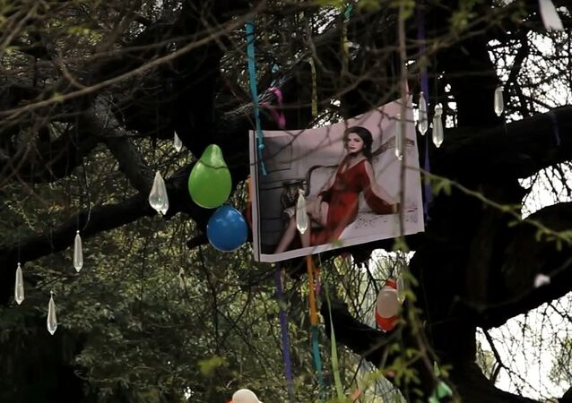 Virgin tree at Hindu College: Delhi college students pray to lose virginity here